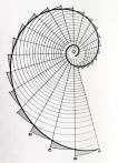 spiral_fibonacci
