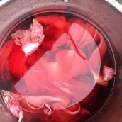 Hibiscus Dye with Alum
